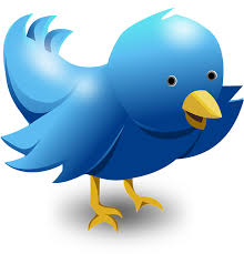 twitter-formation Formation twitter